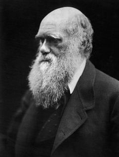 Charles Darwin photograph by Julia Margaret Cameron 1968